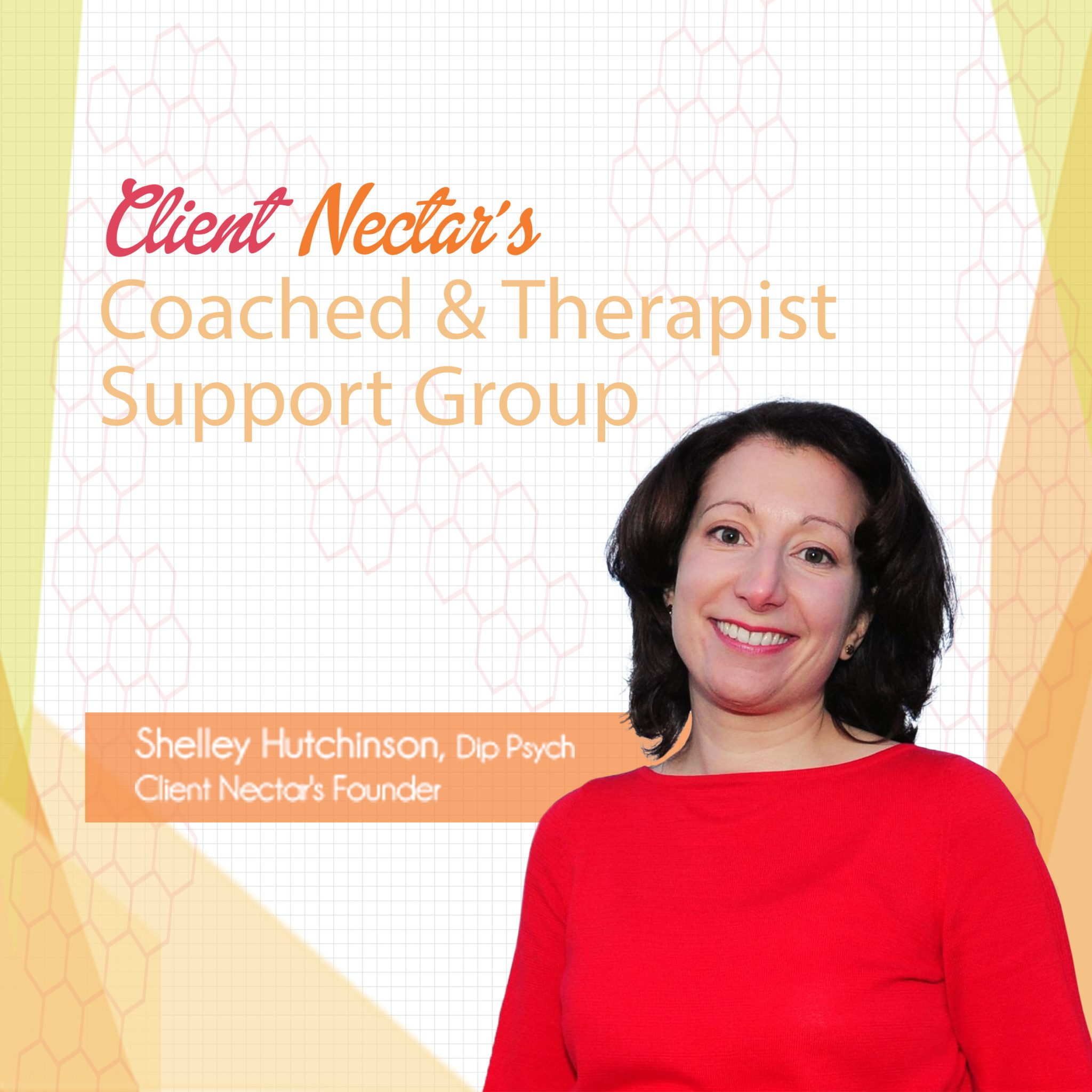 Client Nectar Therapist Support Group